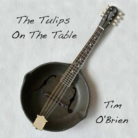 The Tulips On The Table — Tim O'Brien