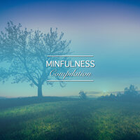 #10 Minfulness Compilation for Meditation, Spa and Relaxation — Asian Zen Spa Music Meditation, Japanese Relaxation and Meditation, Guided Meditation