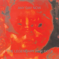 Any Day Now — Legendary Pink Dots