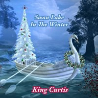 Swan Lake In The Winter — King Curtis