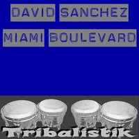 Miami boulevard — David Sanchez