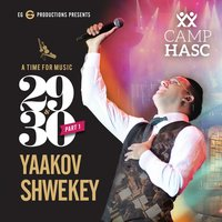 A Time For Music 29 & 30, Vol. 1 — Yaakov Shwekey