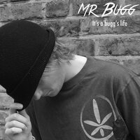 It's a Bugg's Life — Mr Bugg