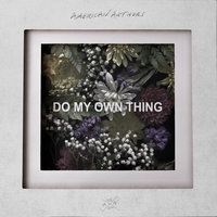 Do My Own Thing — American Authors