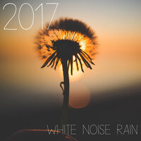2017 All New White Noise Collection of Rain Sounds — Zen Music Garden, White Noise Research, Zen Music Garden, White Noise Research, Nature Sounds