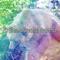 24 Storms Graceful Presence — Thunderstorms
