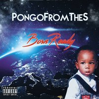 Born Again — PongoFromTheS