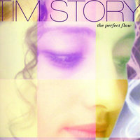 The Perfect Flaw — Tim Story