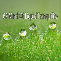 67 Mind Of Liquid Tranquility — White Noise Research
