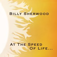 At the Speed of Life — Billy Sherwood