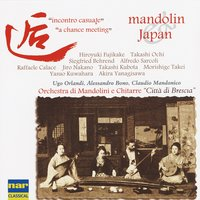 Mandolin & Japan: Incontro casuale — Various Orchestra