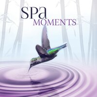 Spa Moments – Wellness Music Spa, Pure Mind and Body with Healing Massage Music, Harmony of Senses, Therapy Music for Relax, Inner Peace — Serenity Spa Music Zone