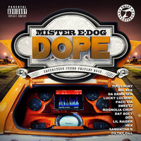 D.O.P.E (Destroying Other Peoples Egos) — Mister E-Dog