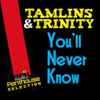 You'll Never Know — Tamlins, Tamlins feat. Trinity
