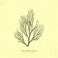 Parallels Vol. III — The Woodlands