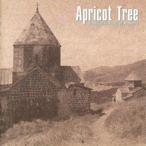 Apricot tree, Абрикосовое дерево - Duduk Solo
