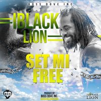 Set Mi Free — IBlack Lion