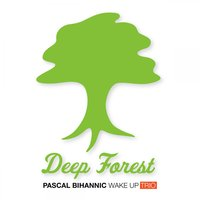Deep Forest — Wake Up Trio & Pascal Bihannic feat. Anthony La Rosa