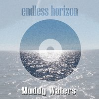 Endless Horizon — Muddy Waters
