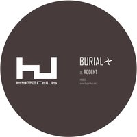 Rodent — Burial