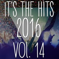 It's the Hits! 2016, Vol.14 — New Tribute Kings