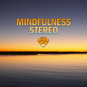 Mindfulness Stereo - Real Feelings