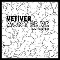 Won't Be Me — Vetiver