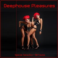 Deephouse Pleasures — сборник
