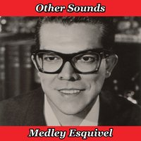 Other Sounds Medley: The Breeze and I (Andalucia) / Chant to the Night / Canadian Sunset / Street Scene / I Get a Kick out of You / Primavera / Street of Dreams / La Mantilla / One for My Baby / Dancing in the Dark / Snowfall / Travelin' — ESQUIVEL