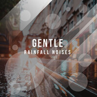 #12 Gentle Rainfall Noises — Sounds of Rain & Thunder Storms, Entspannungsmusik Meer, entspannungsmusik, Entspannungsmusik, Entspannungsmusik Meer, Sounds of Rain & Thunder Storms