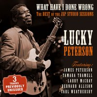 What Have I Done Wrong - The Best of the JSP Sessions — Lucky Peterson