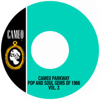 Cameo Parkway Pop And Soul Gems Of 1966 Vol. 3 — сборник