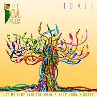 Igali — The Owl Project