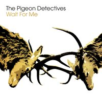 Wait for Me — The Pigeon Detectives
