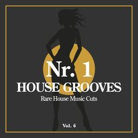 Nr. 1 House Grooves, Vol. 6 (Rare House Music Cuts) — сборник