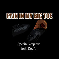 Pain in My Big Toe — Special Request, Special Request feat. Rey.T