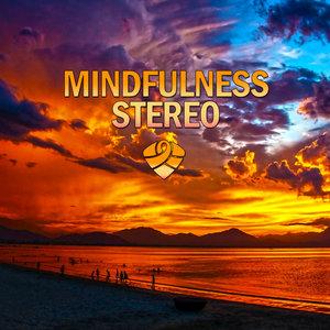 Mindfulness Stereo - A Real Pleasure