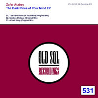 The Dark Pines of Your Mind EP — Zafer Atabey