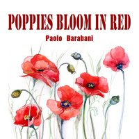 Poppies Bloom in Red — Paolo Barabani