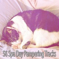 56 Spa Day Pampering Tracks — Best Relaxing Spa Music