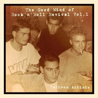 The Good Wind of Rock'n'roll Revival, Vol. 1 — сборник