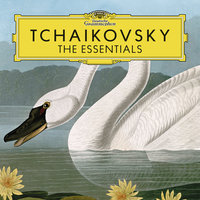 Tchaikovsky: The Essentials — сборник