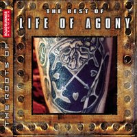 The Best of Life of Agony — Life Of Agony
