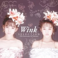 Selection - 25th Anniversary Self Selection - — Wink