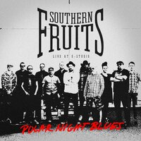 Polar Night Blues — Southern Fruits