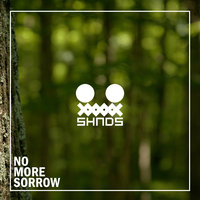 No More Sorrow — SHNDS