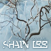 Say You Love Me — Shain Lee
