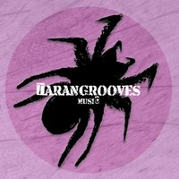 Percussion Grooves — Ragganame