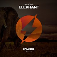 Elephant — Bianchin