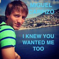 I Knew You Wanted Me Too — Miguel Carpizo